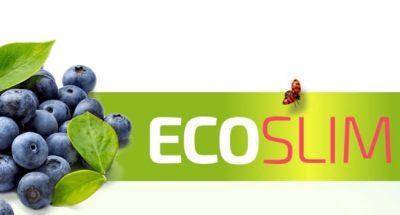 Eco Slim: funciona mejor que cualquier cosa que hayas probado para bajar de peso